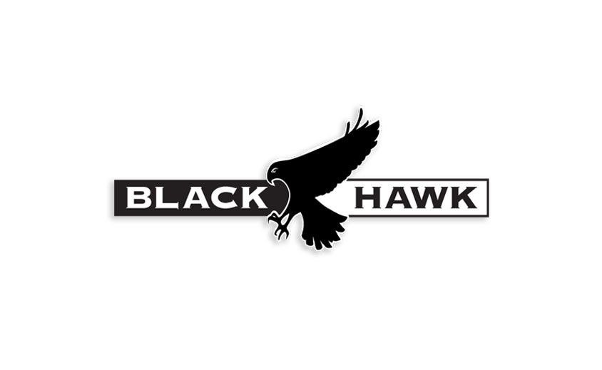 Logo Design: Black Hawk