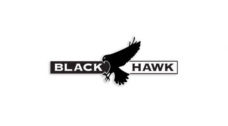 Logo Design: Black Hawk